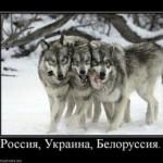 Славянские демотиваторы. Подборка 11